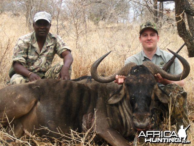 Blue Wildebeest Leeukop Safaris