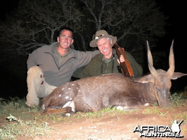 Cape Bushbuck with Leeukop Safaris