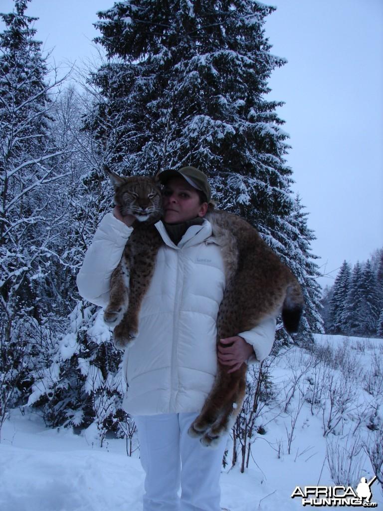 Lynx Hunt in Romania