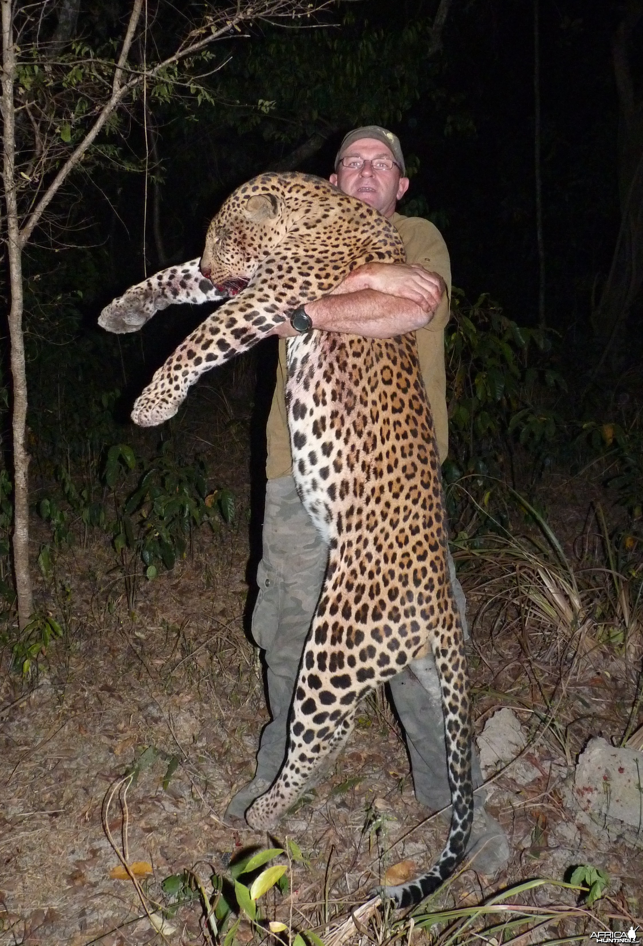 Leopard hunted in Central African Republic
