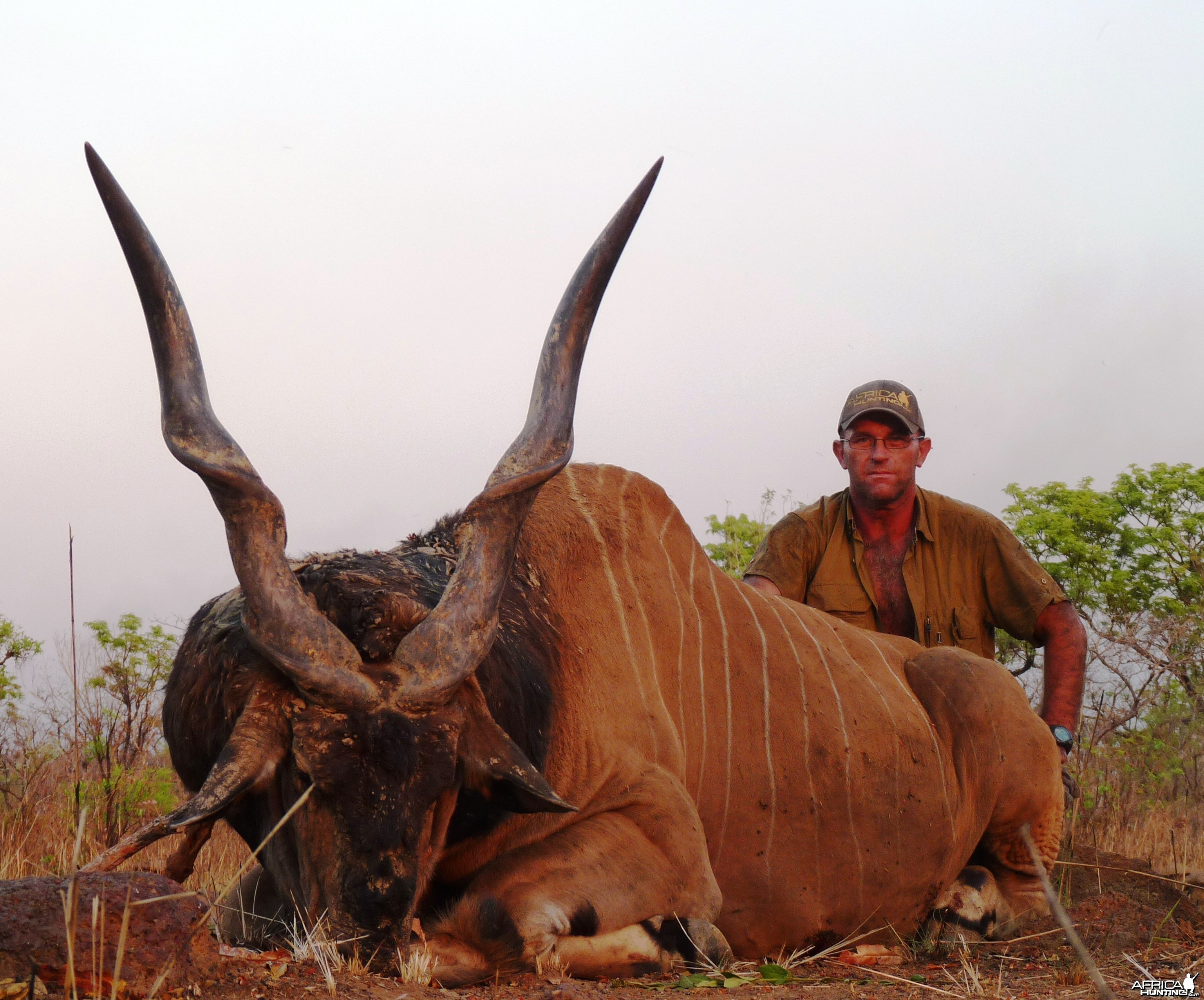 Hunting Giant Eland in Central African Republic