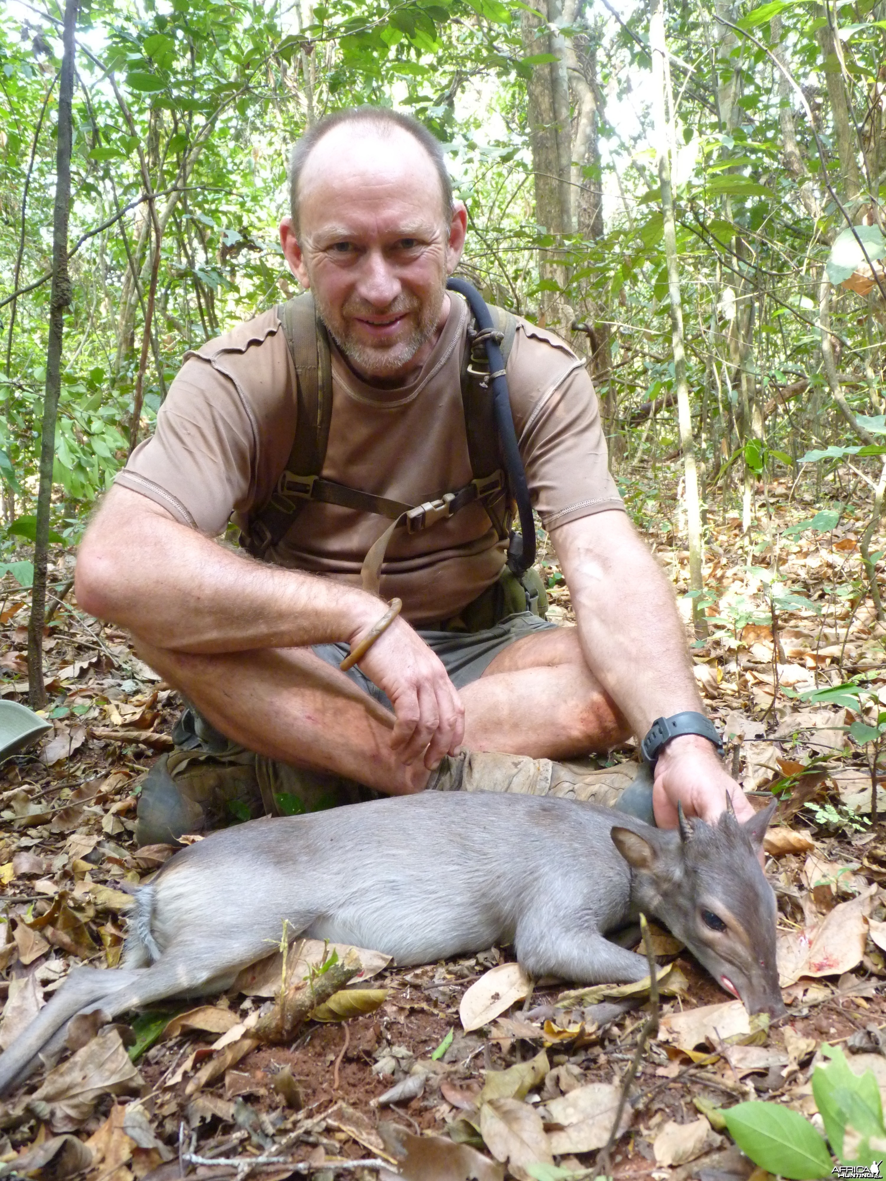 Hunting Blue Duiker in Central African Republic