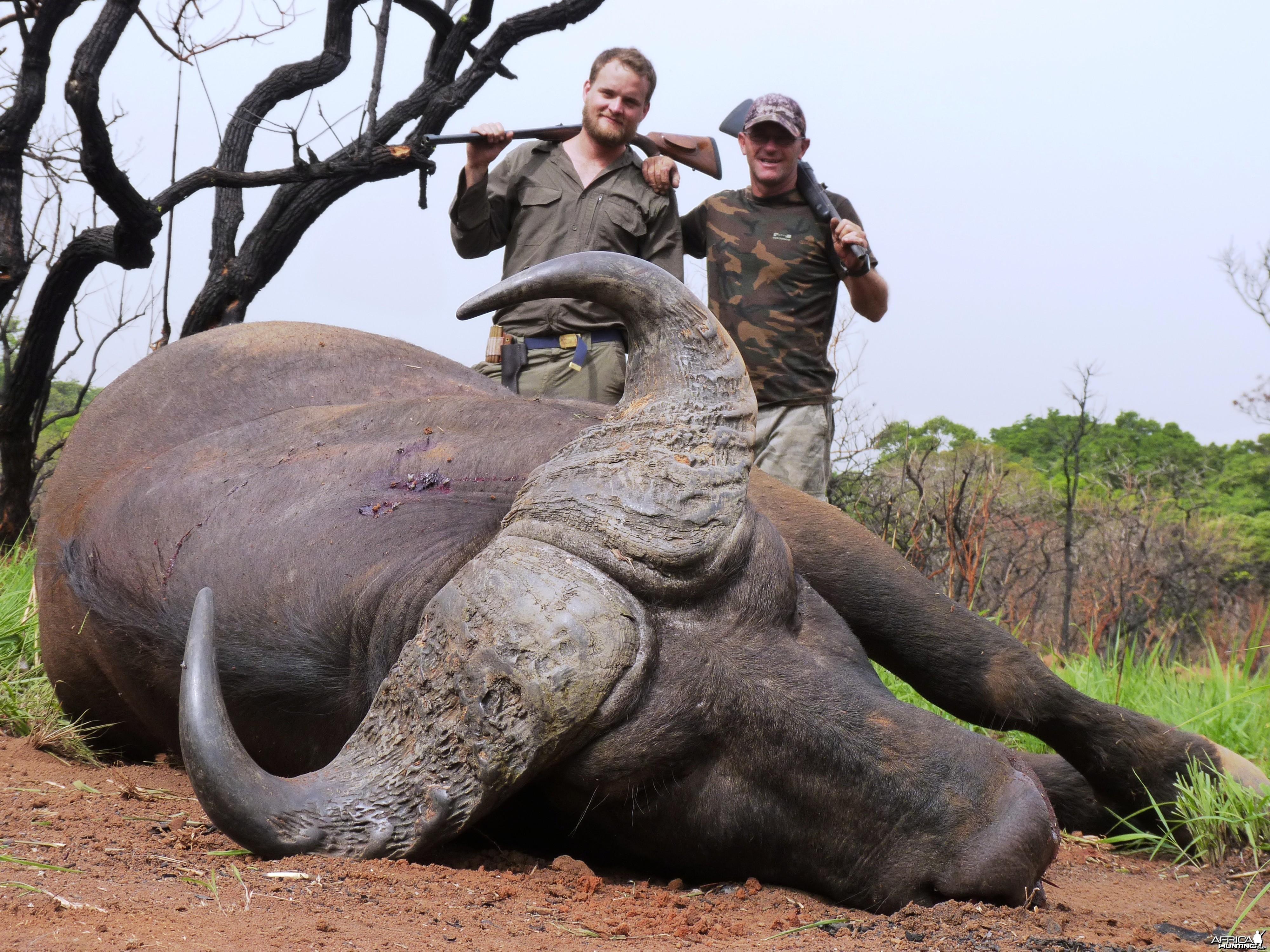 Hunting Buffalo in CAR