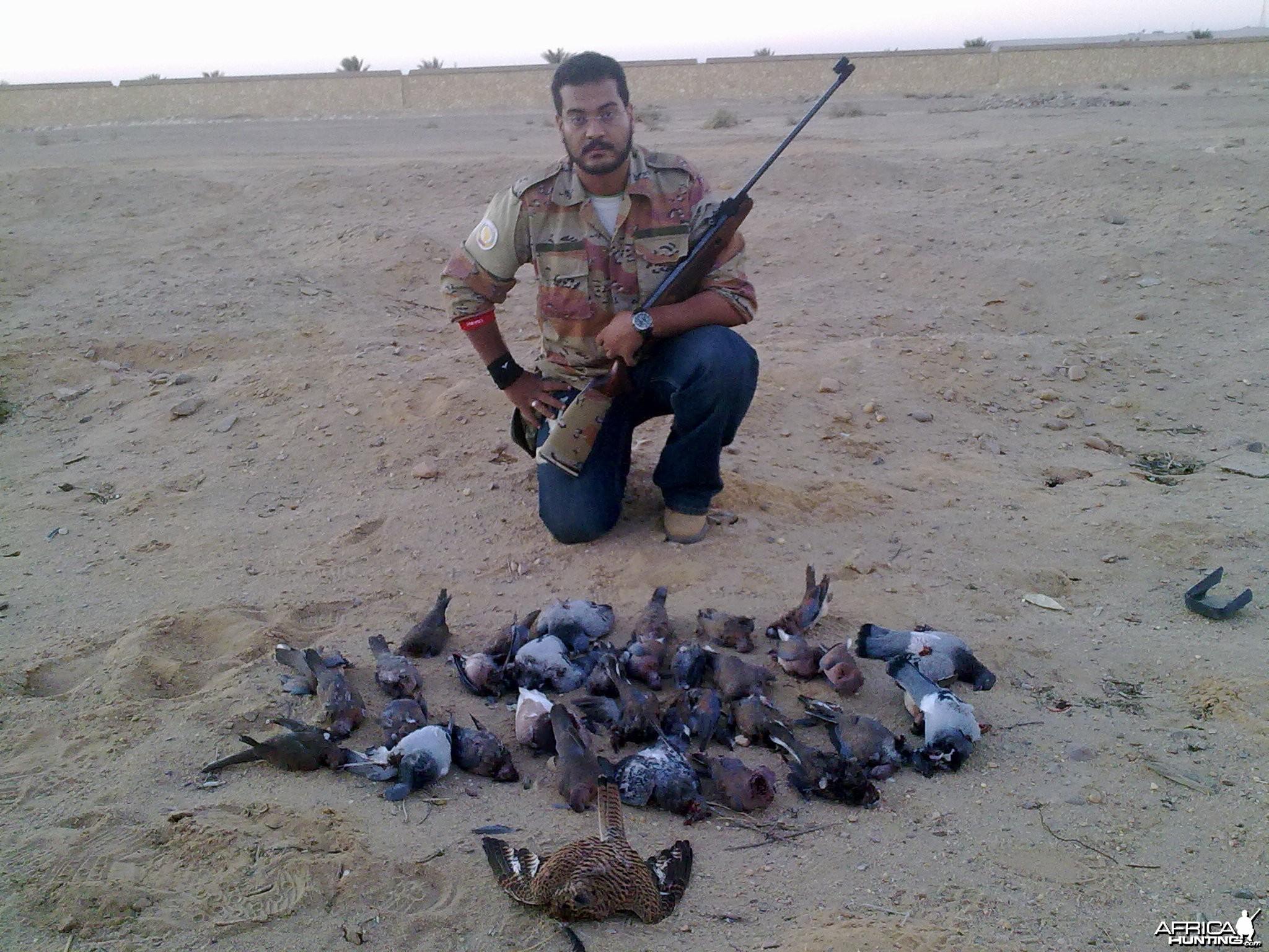 Hunting Birds