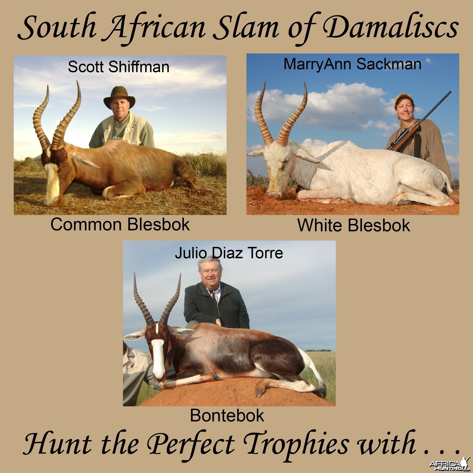 South African Slam of Damaliscs