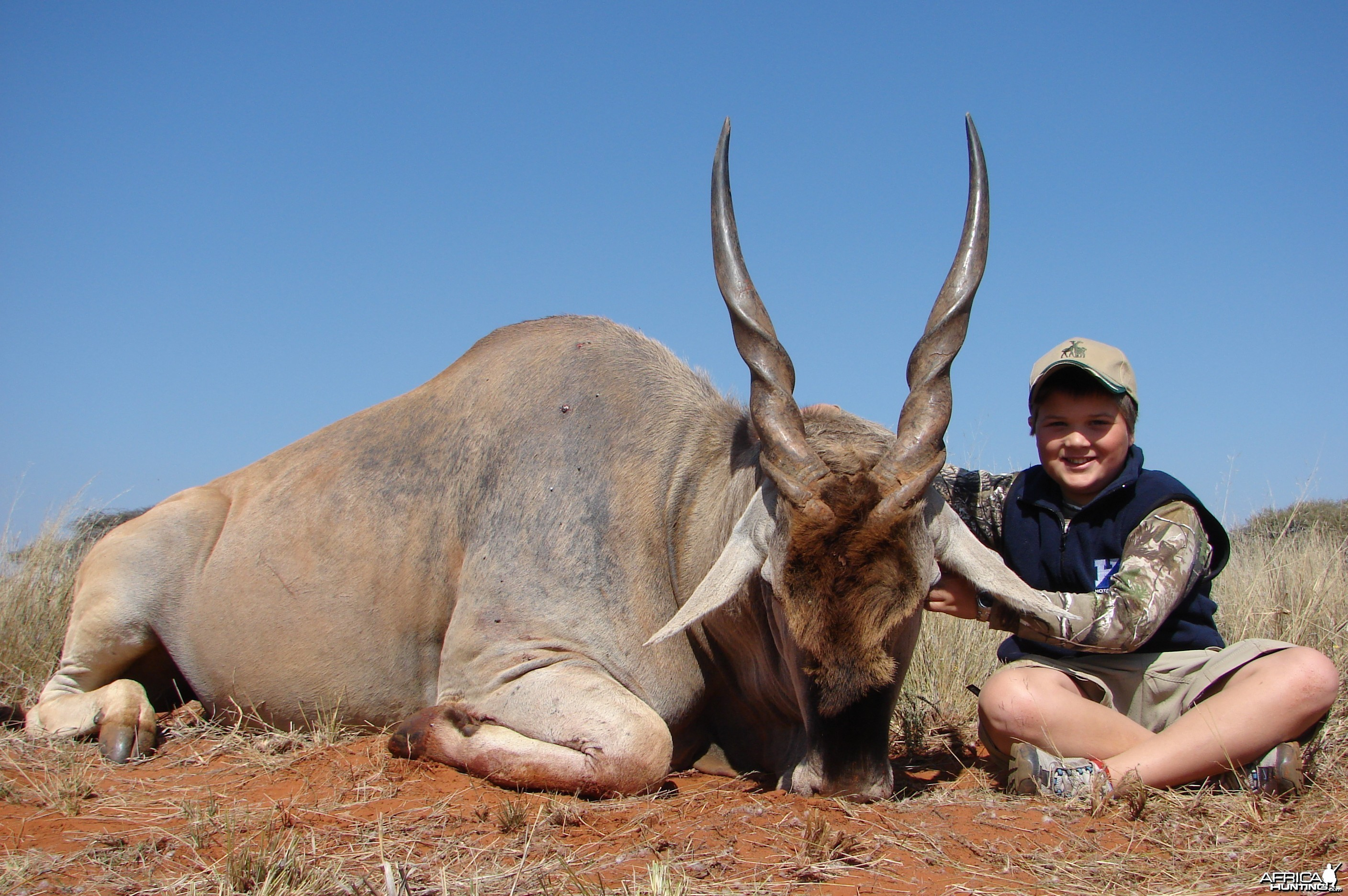 Hunting Cape Eland with Wintershoek Johnny Vivier Safaris in SA