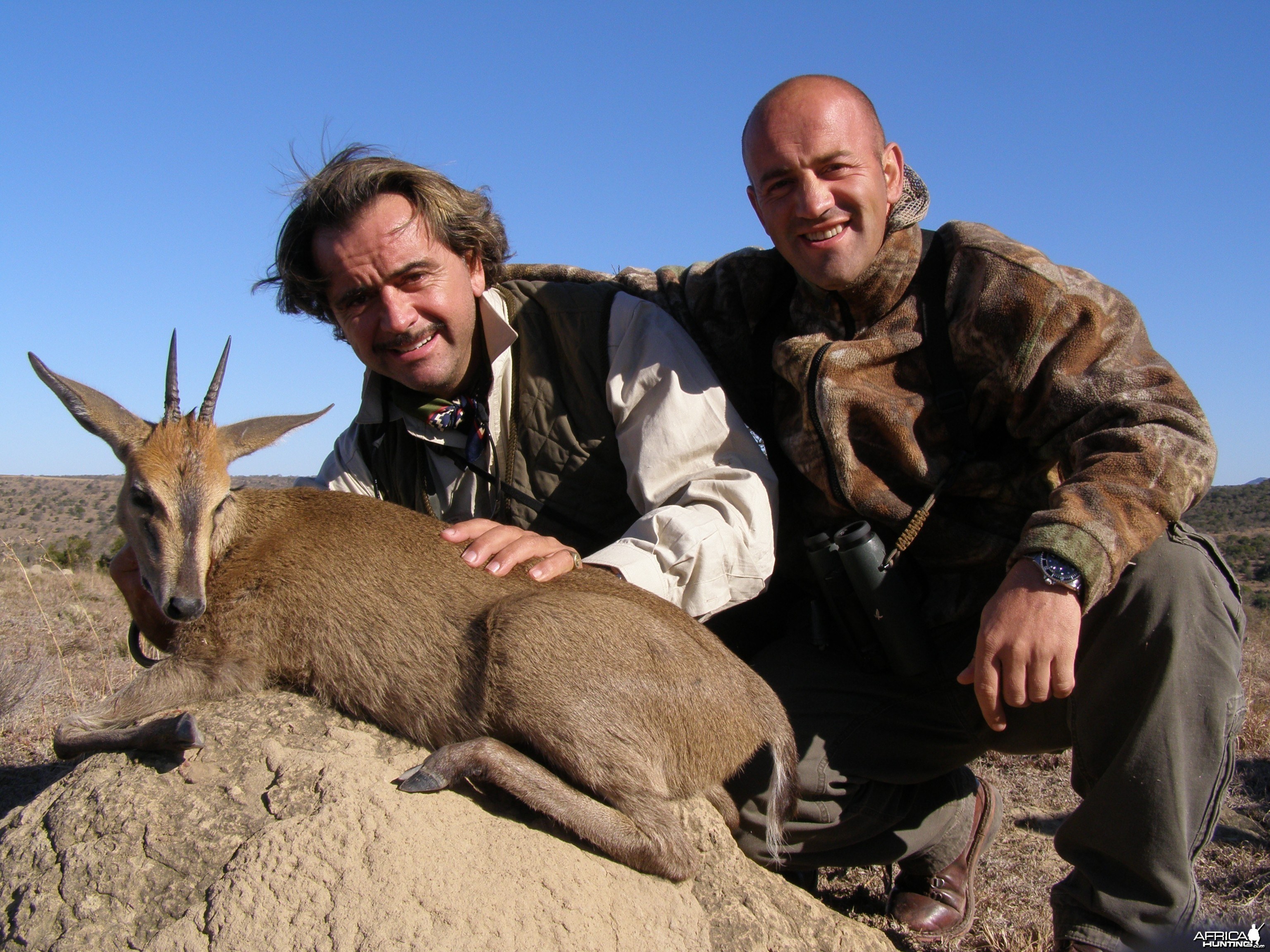Hunting Grey Duiker with Wintershoek Johnny Vivier Safaris in SA
