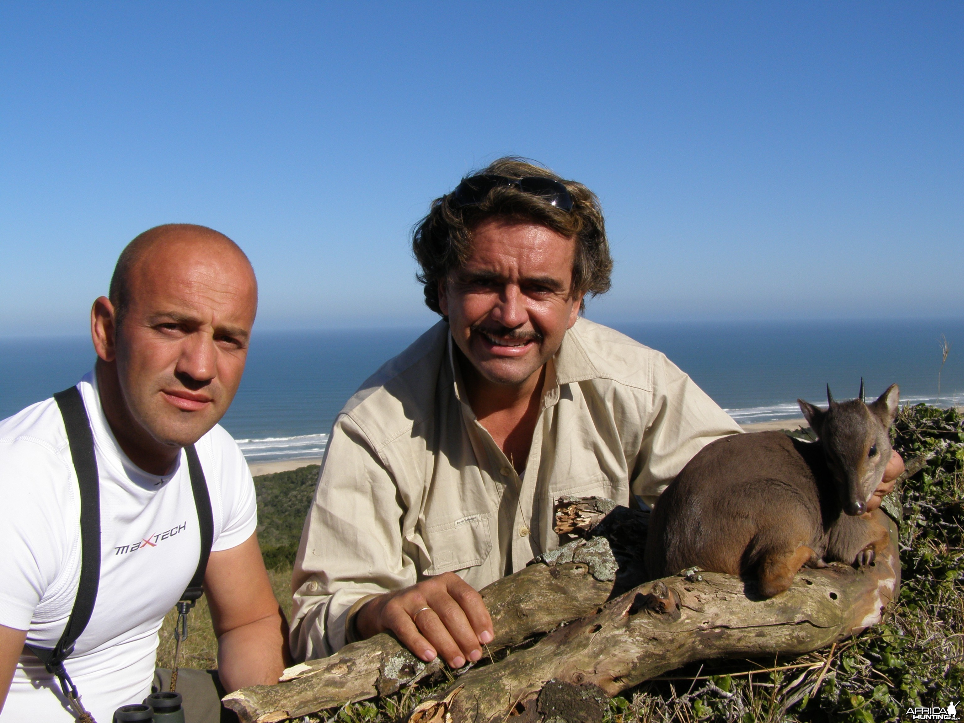 Hunting Blue Duiker with Wintershoek Johnny Vivier Safaris in SA
