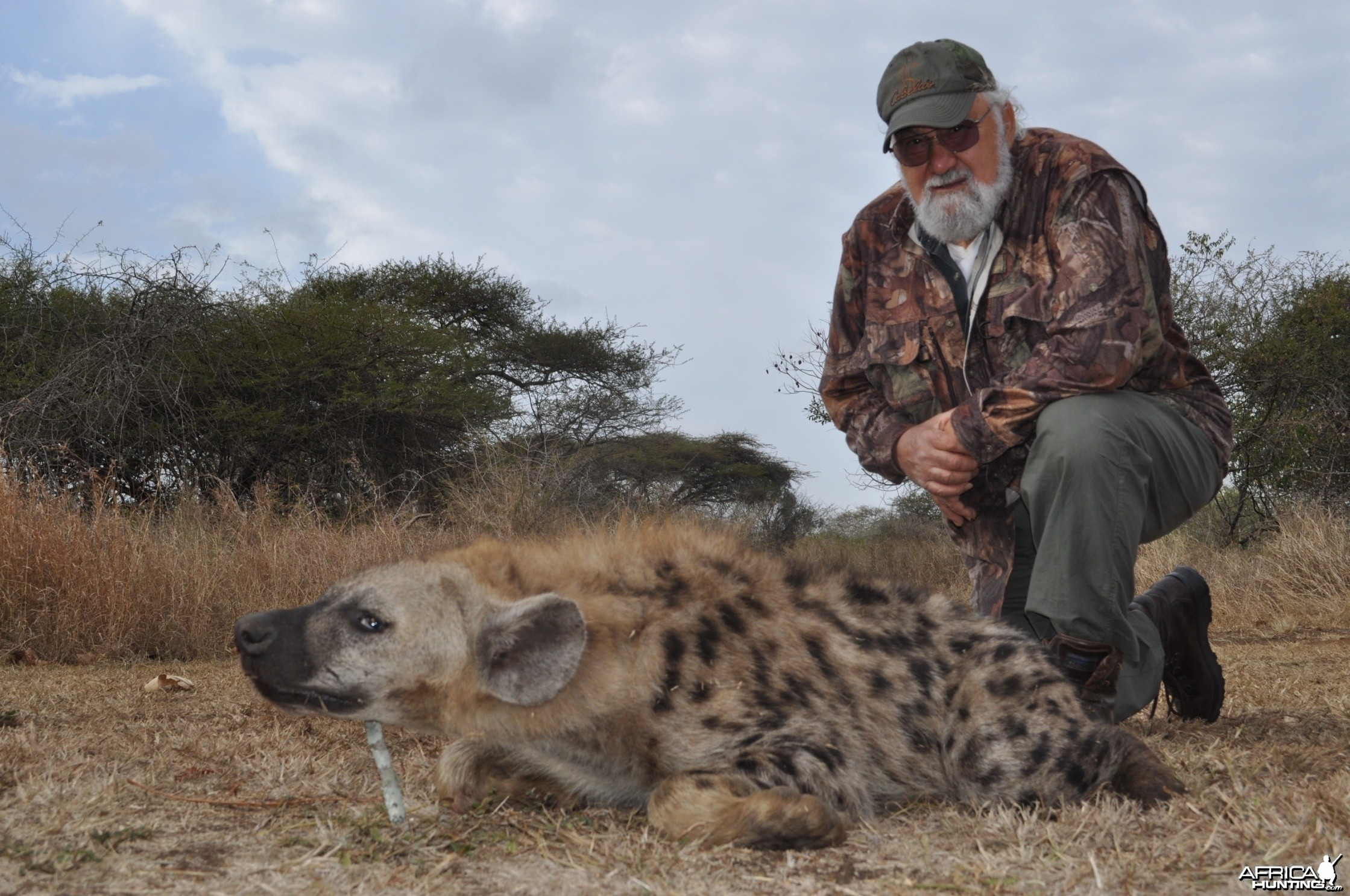 Hunting Hyena with Wintershoek Johnny Vivier Safaris in SA
