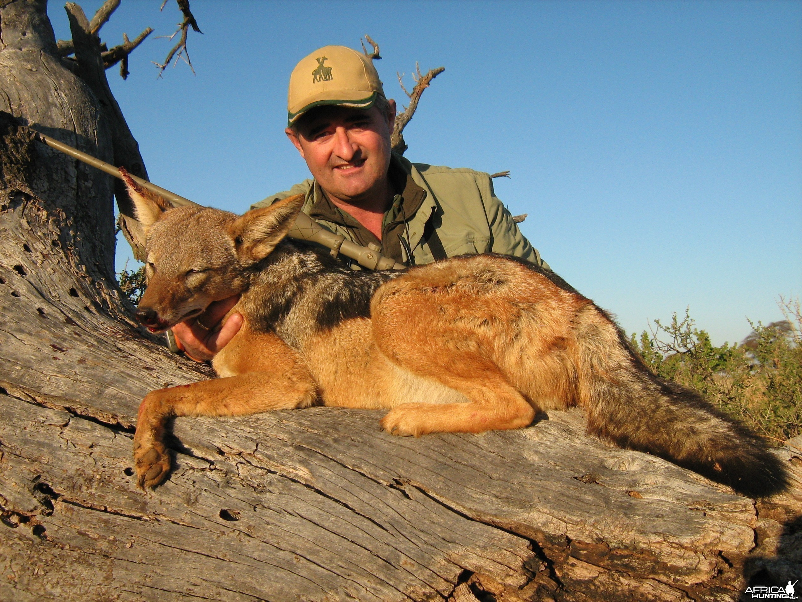 Hunting Jackal with Wintershoek Johnny Vivier Safaris in SA