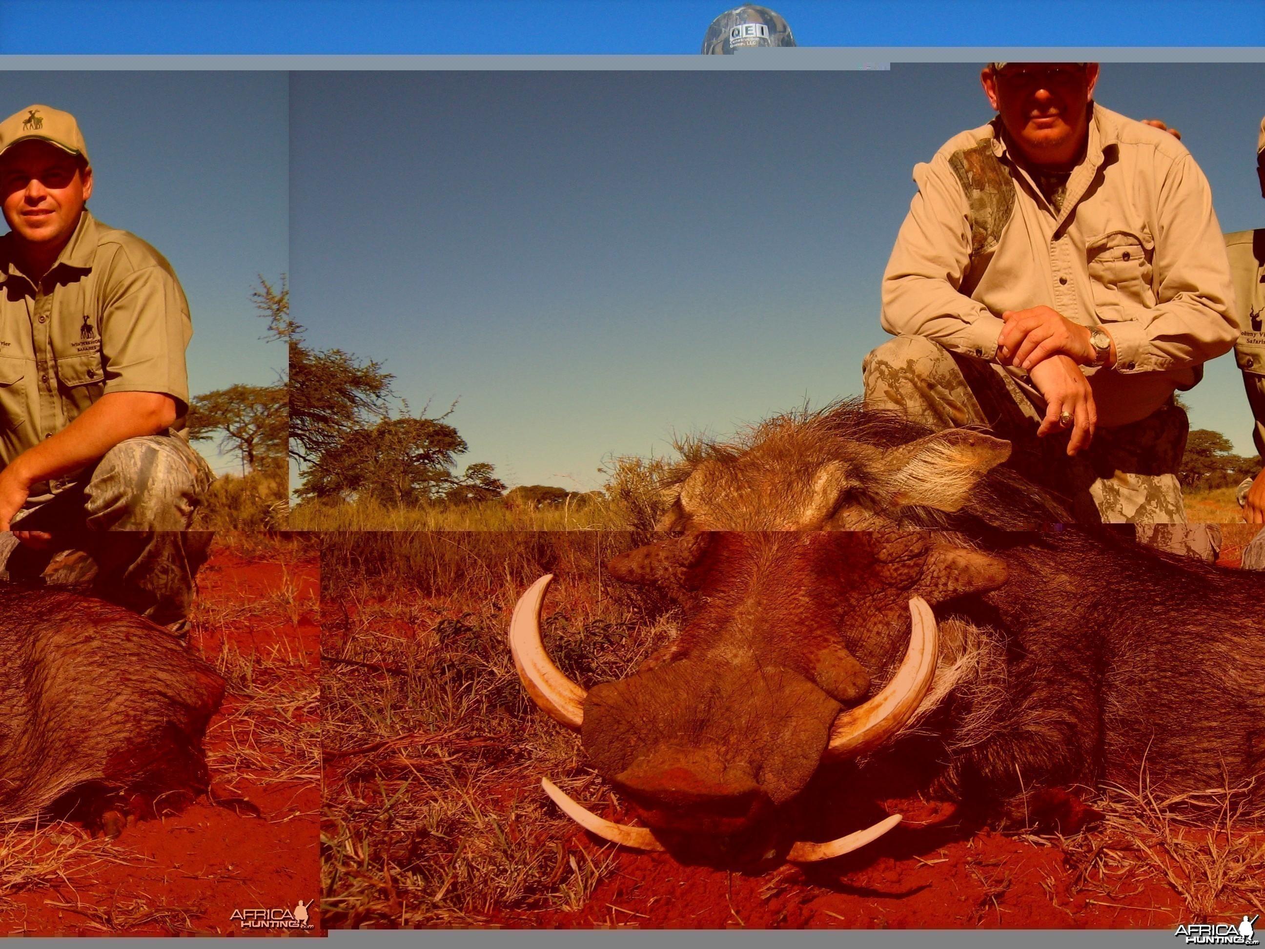 Hunting Warthog with Wintershoek Johnny Vivier Safaris in SA