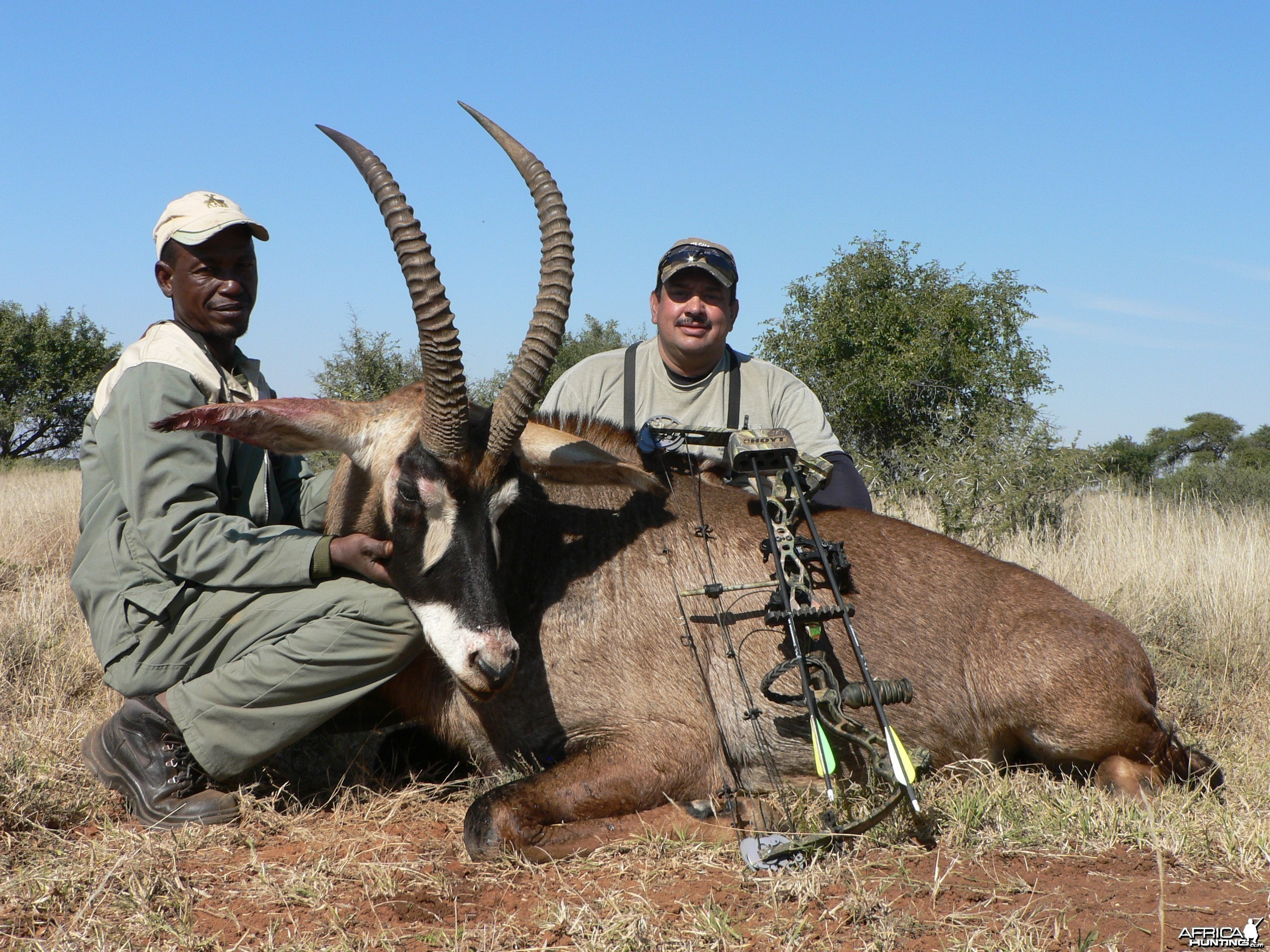 Bowhunting Roan with Wintershoek Johnny Vivier Safaris in SA