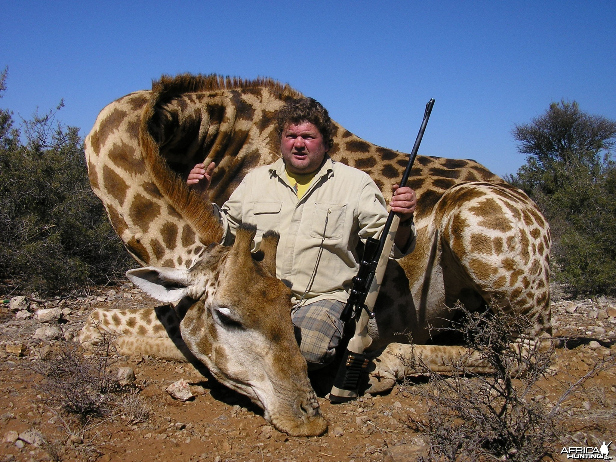 Hunting Giraffe with Wintershoek Johnny Vivier Safaris in SA
