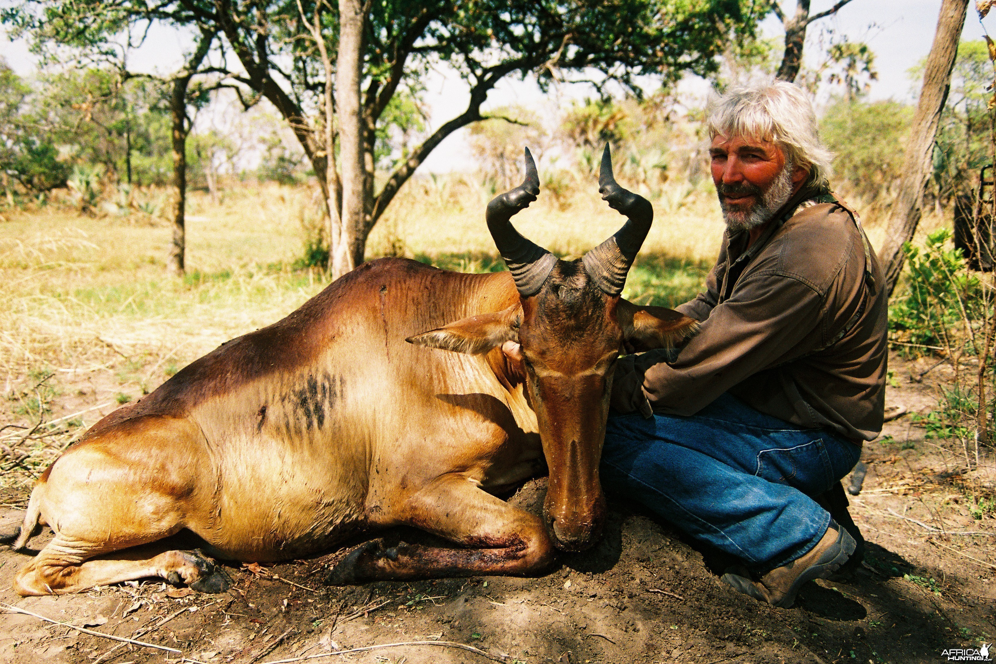 Hunting Lichtenstein Hartebeest with Wintershoek Johnny Vivier Safaris in S