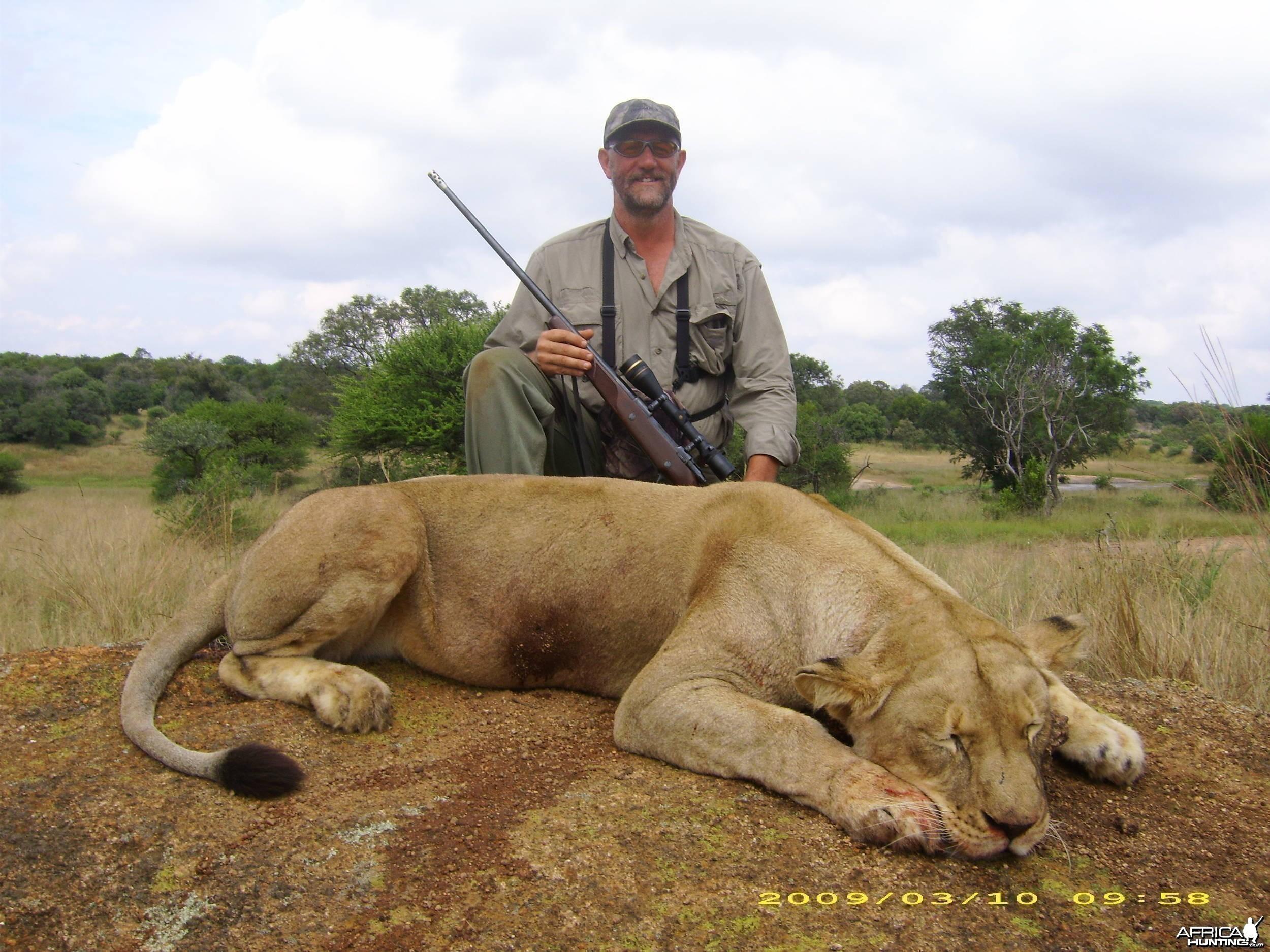 Lioness Inyala Safaris