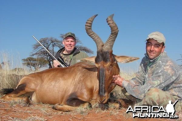 Hunting Red Hartebeest with Wintershoek Johnny Vivier Safaris in SA