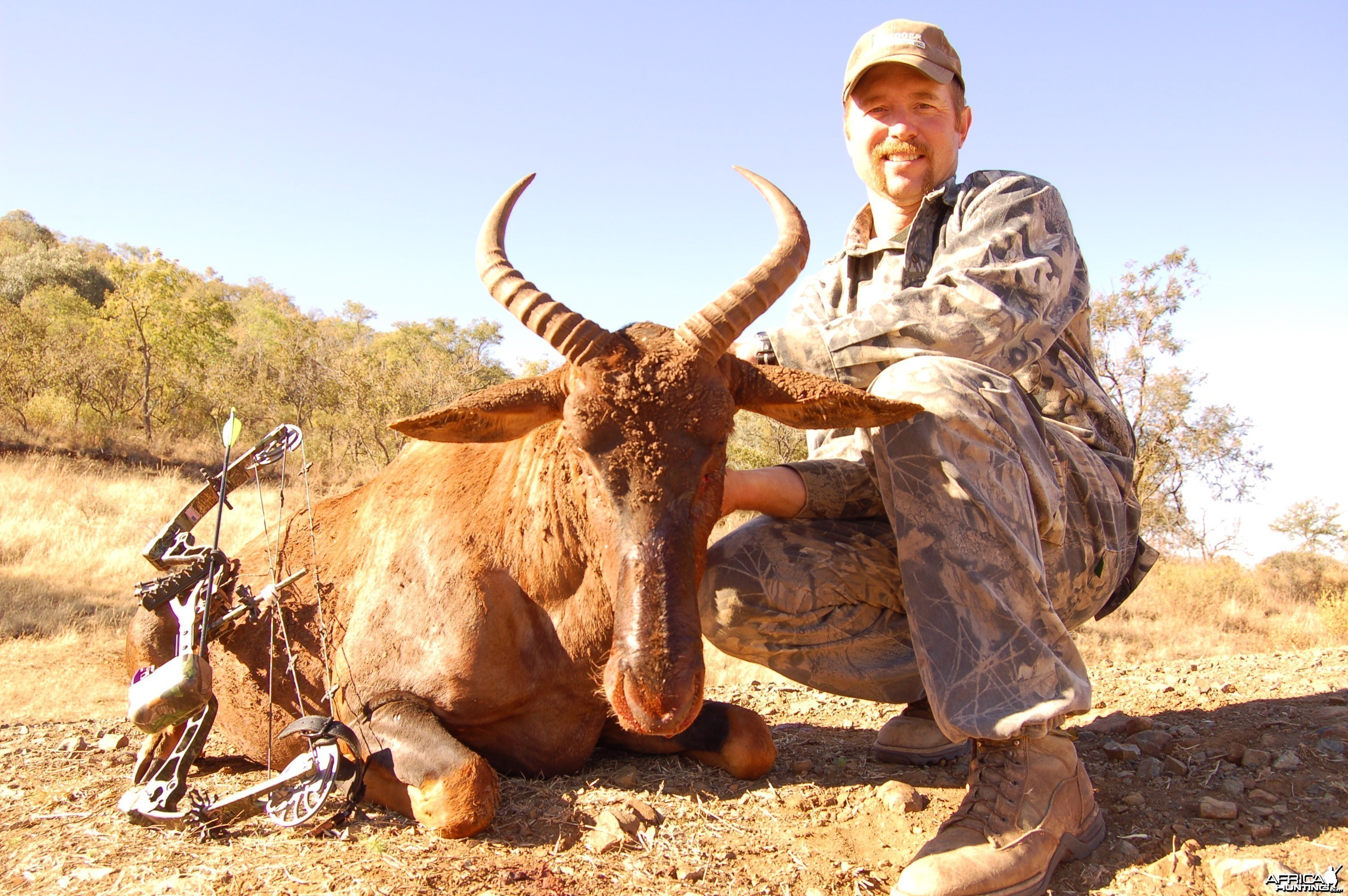 Bowhunting Tsessebe with Wintershoek Johnny Vivier Safaris in SA