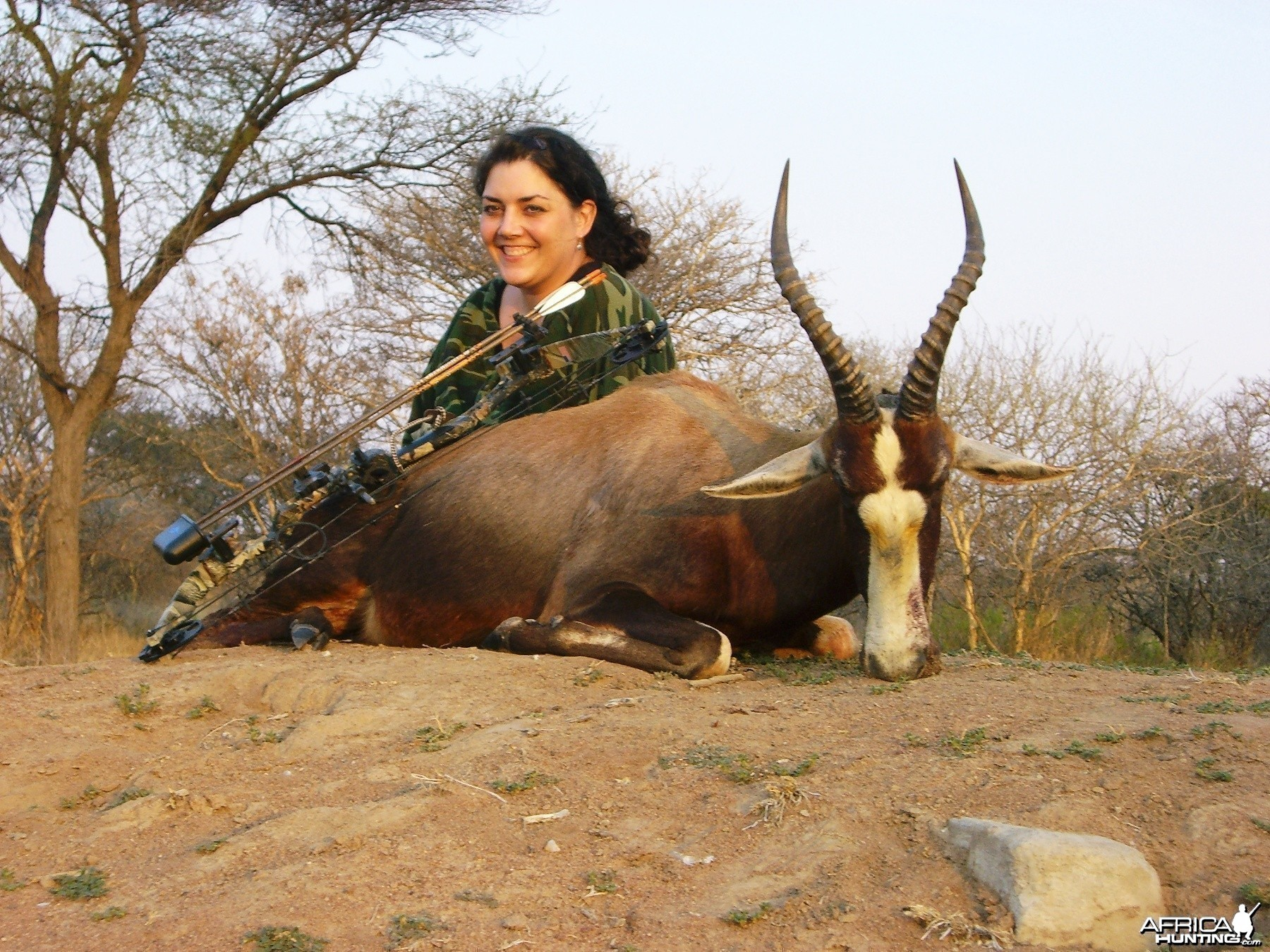 Bowhunting Blesbok