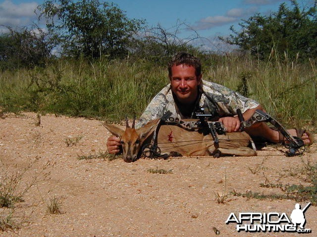 Bow Hunting Duiker in Namibia