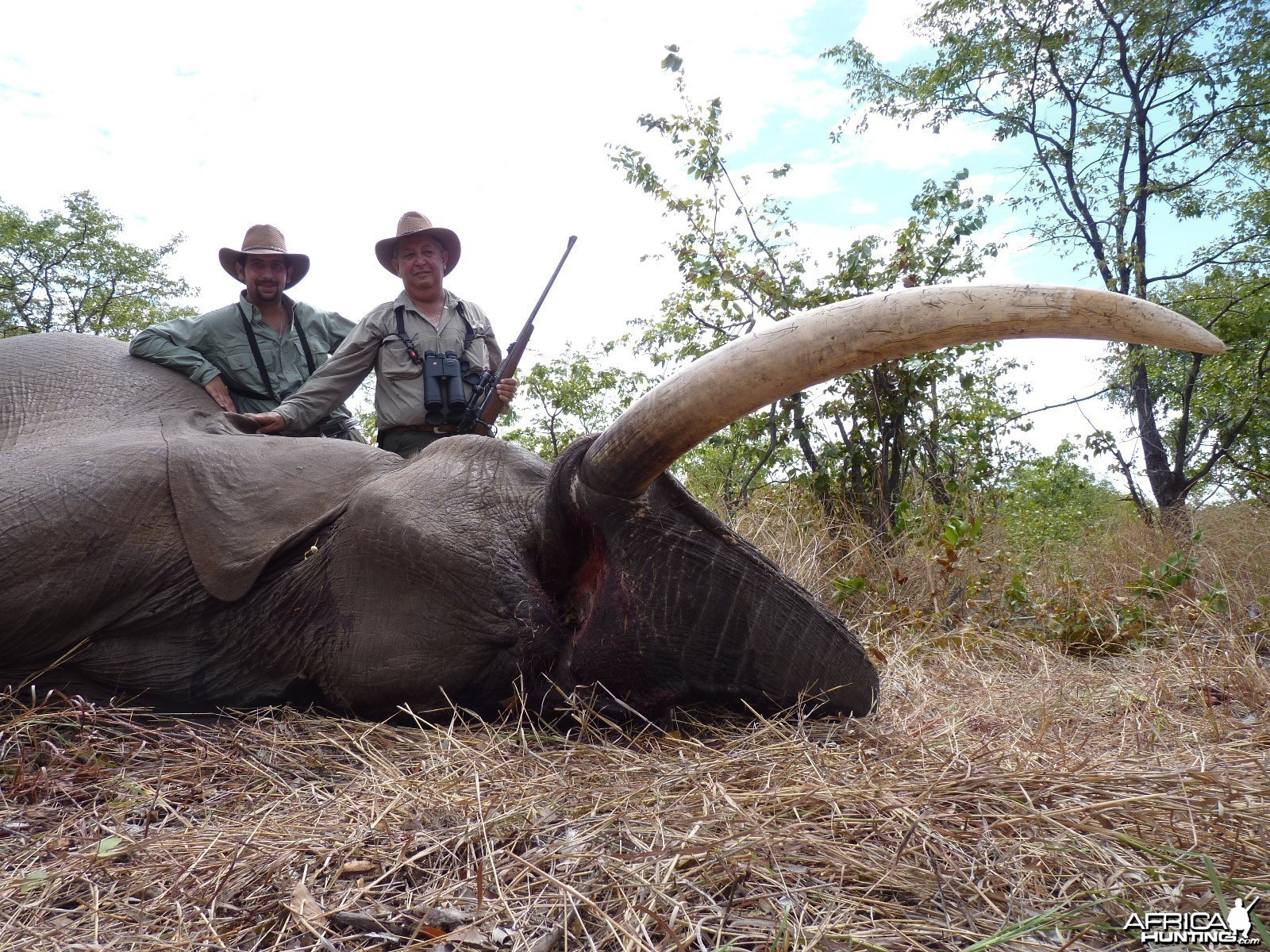 Hunting Elephant with Wintershoek Johnny Vivier Safaris in SA