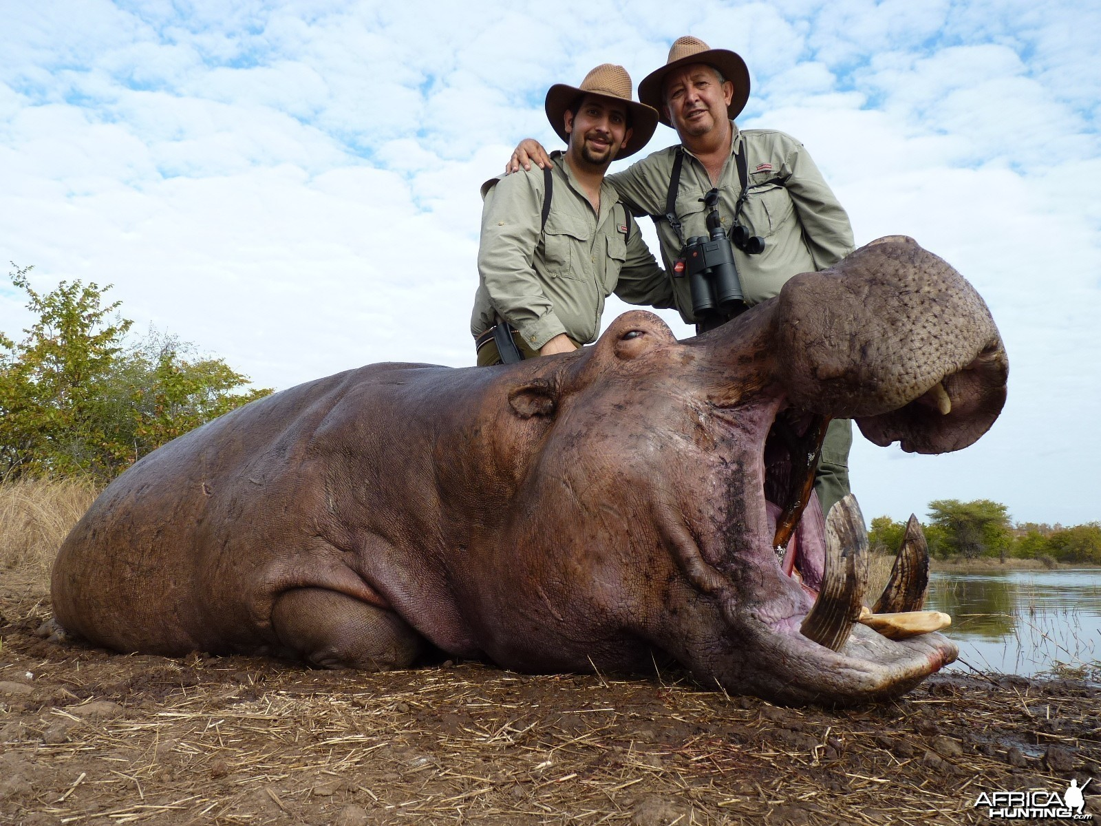 Hunting Hippo with Wintershoek Johnny Vivier Safaris in SA