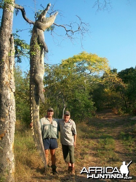 15.75 Ft Croc hunted with Nhenda Safaris Mozambique