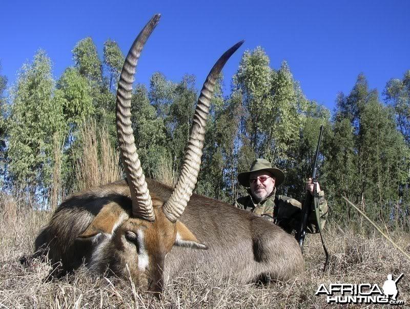 My Waterbuck shot near Potchefstroom