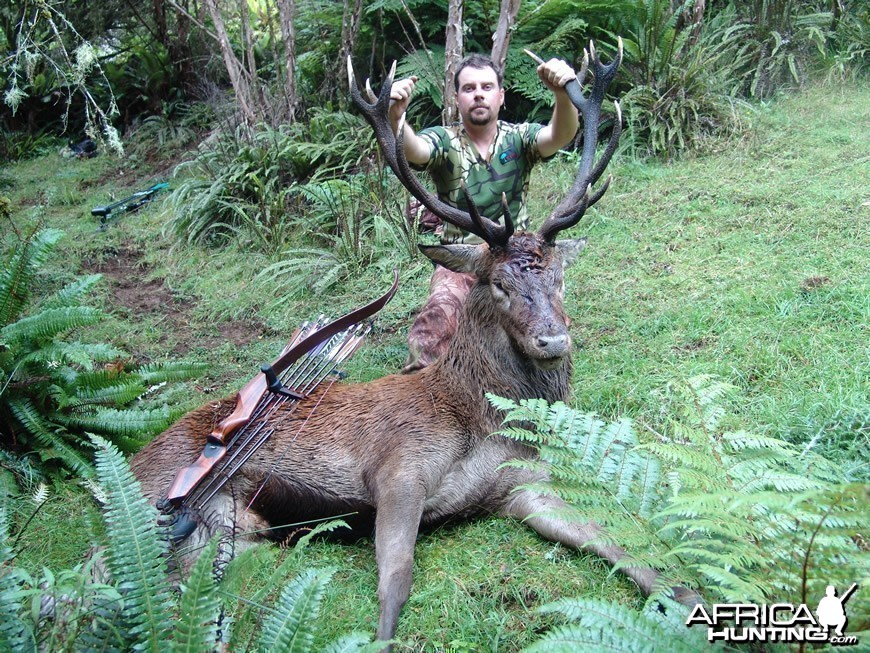 Bowhunting Deer in New Zealand