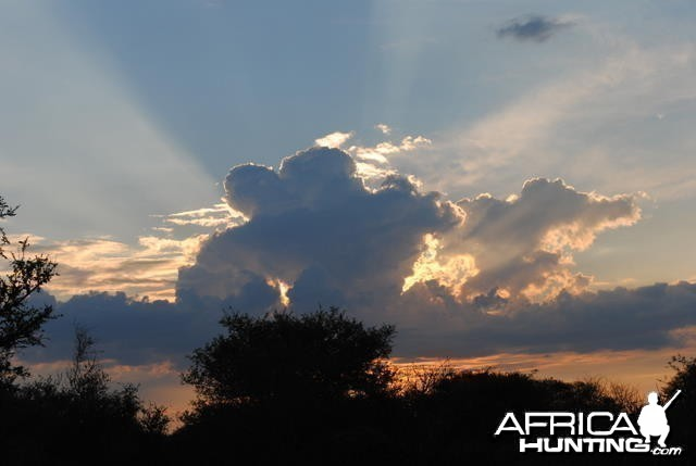 South African Sky