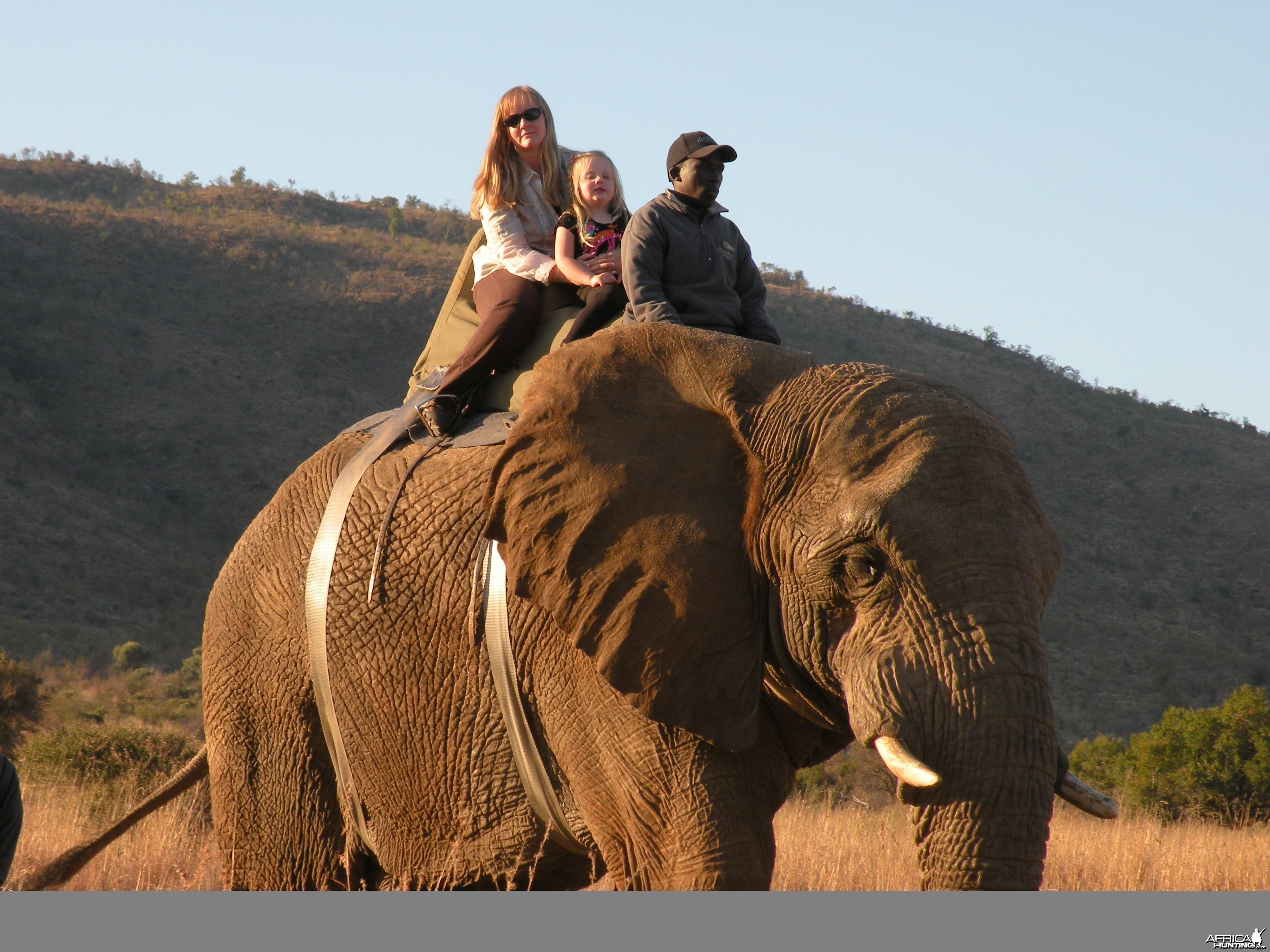 2010 RSA Hunter Elephant Ride