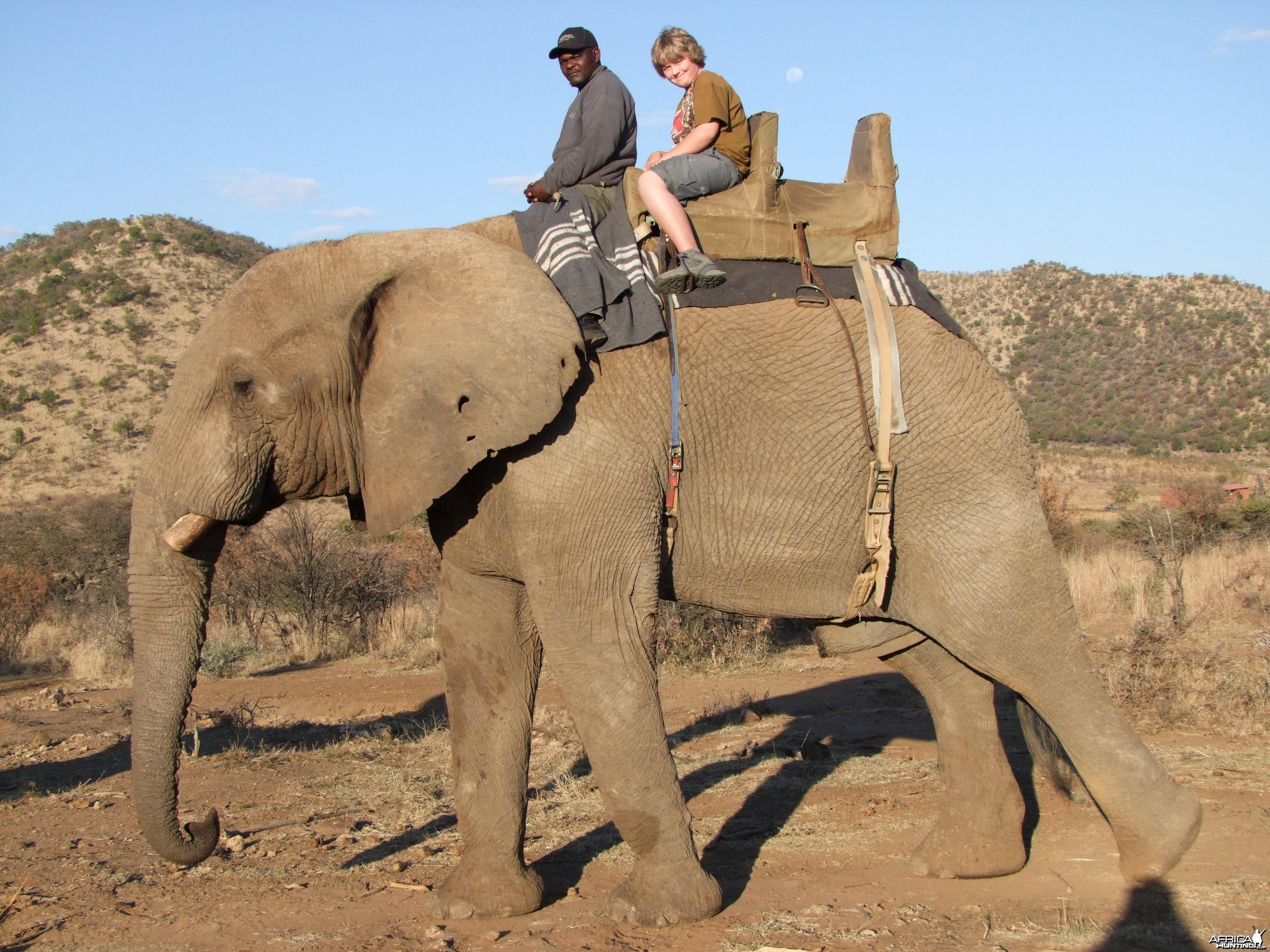 2010 RSA Elephant Ride