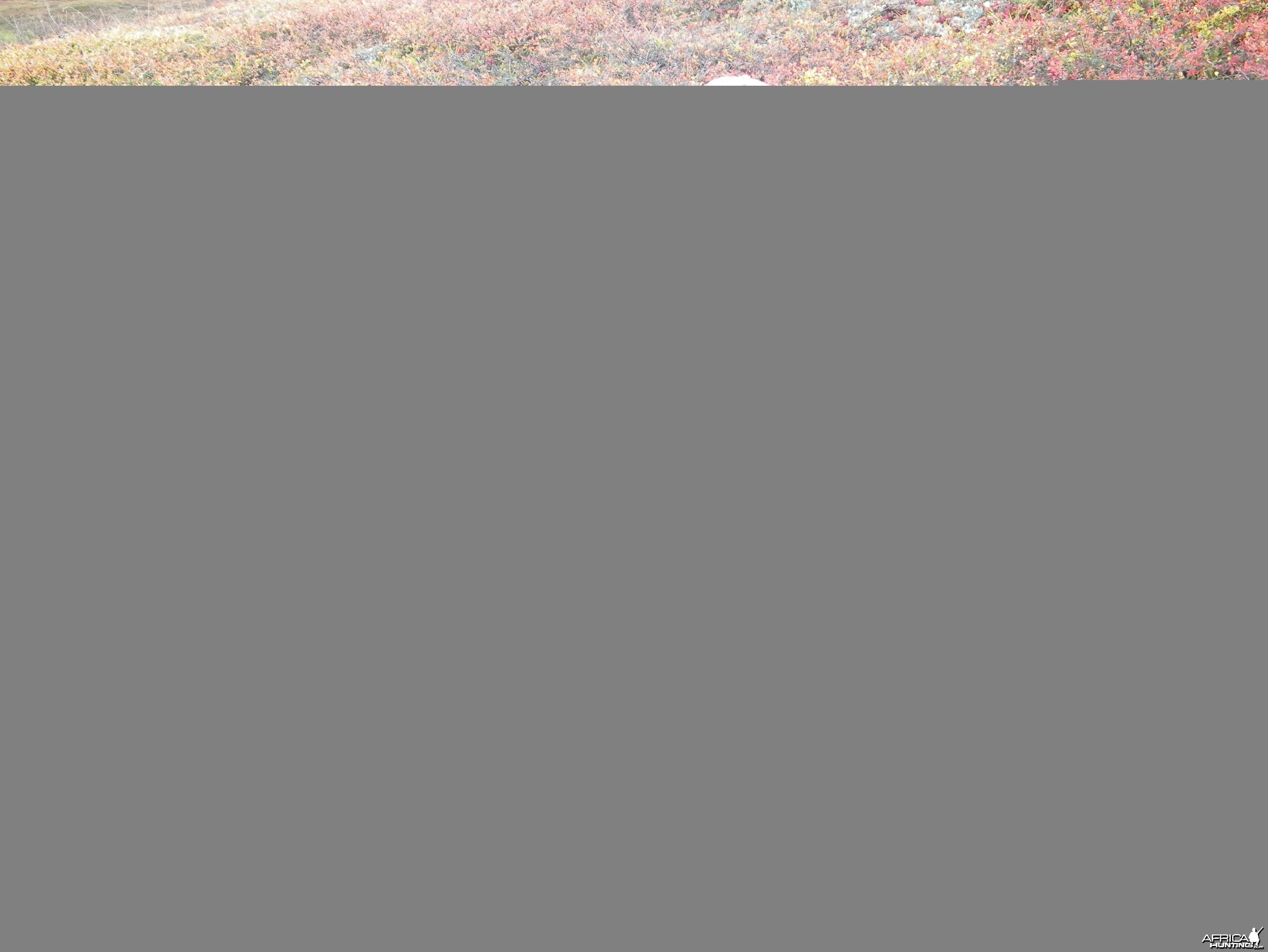 2009 Alaska 2