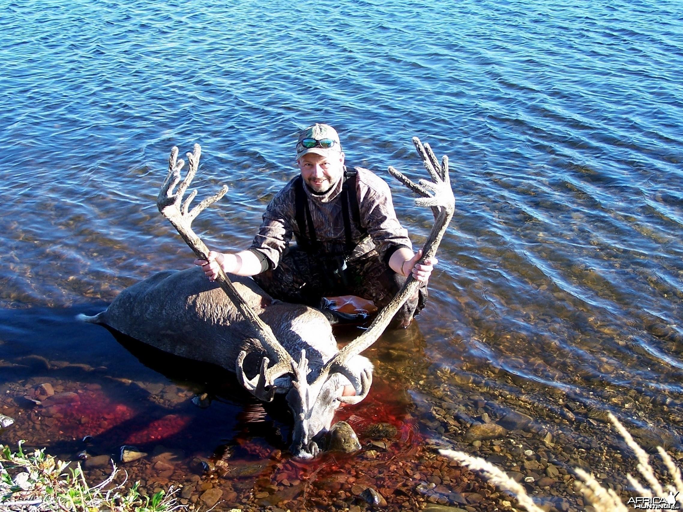 Caribou 2007 Alaska