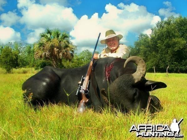 water buffalo by manny fajin