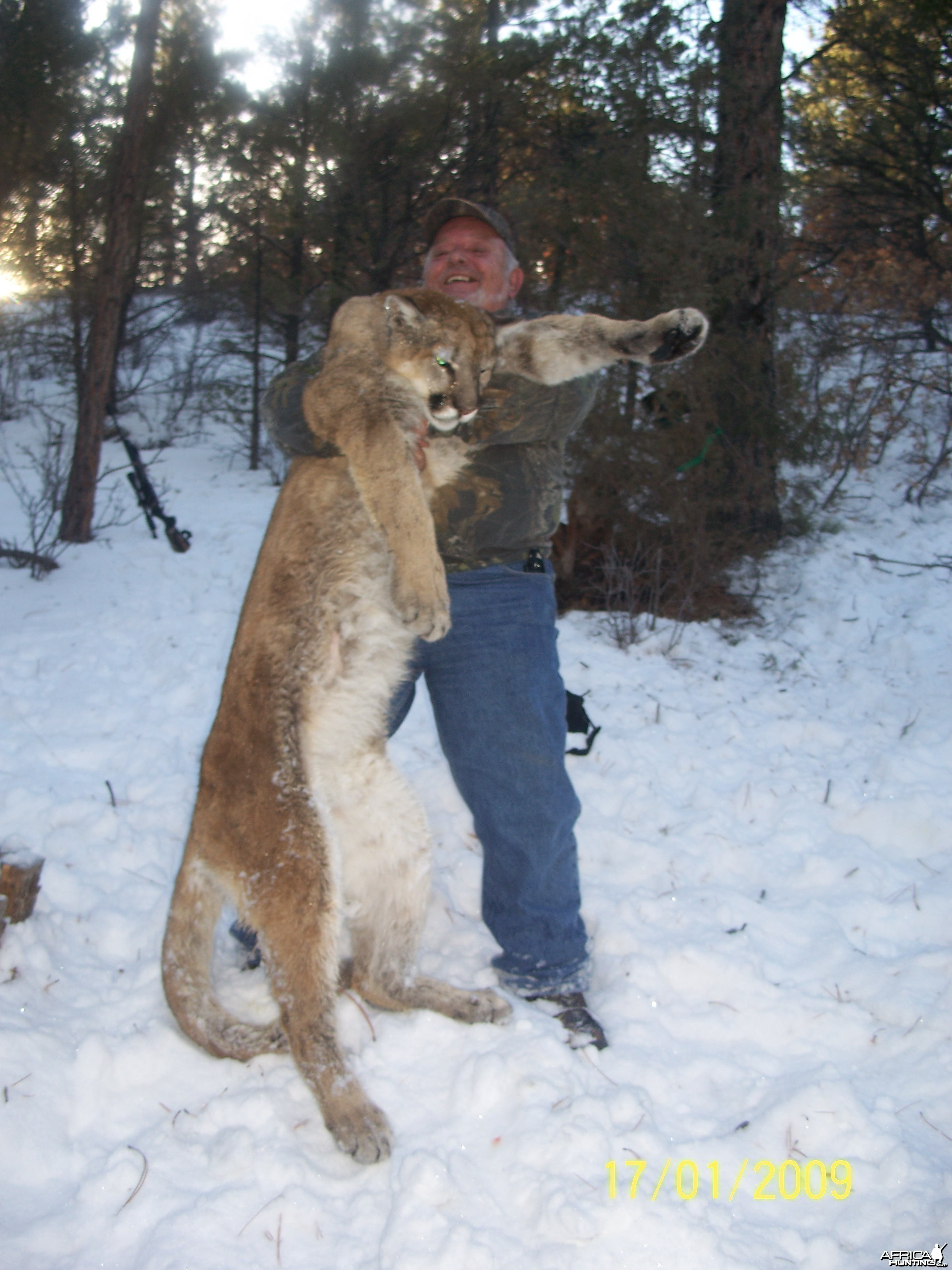 colorado mountain lion hunt by manny fajin