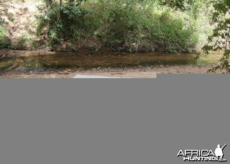 Nothing like a good nap after lunch in the bush