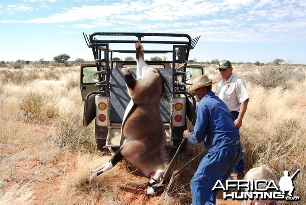 My son, Solomon and Me loading an Oryx taken for the house