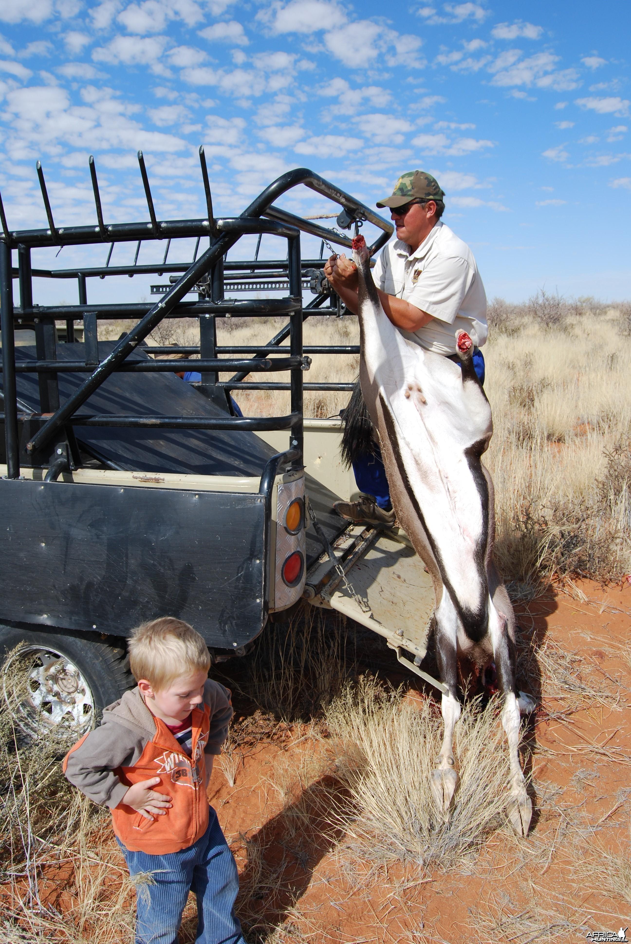 Loading Oryx