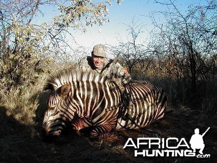 Bow Hunting Hartmann Mountain Zebra in Namibia
