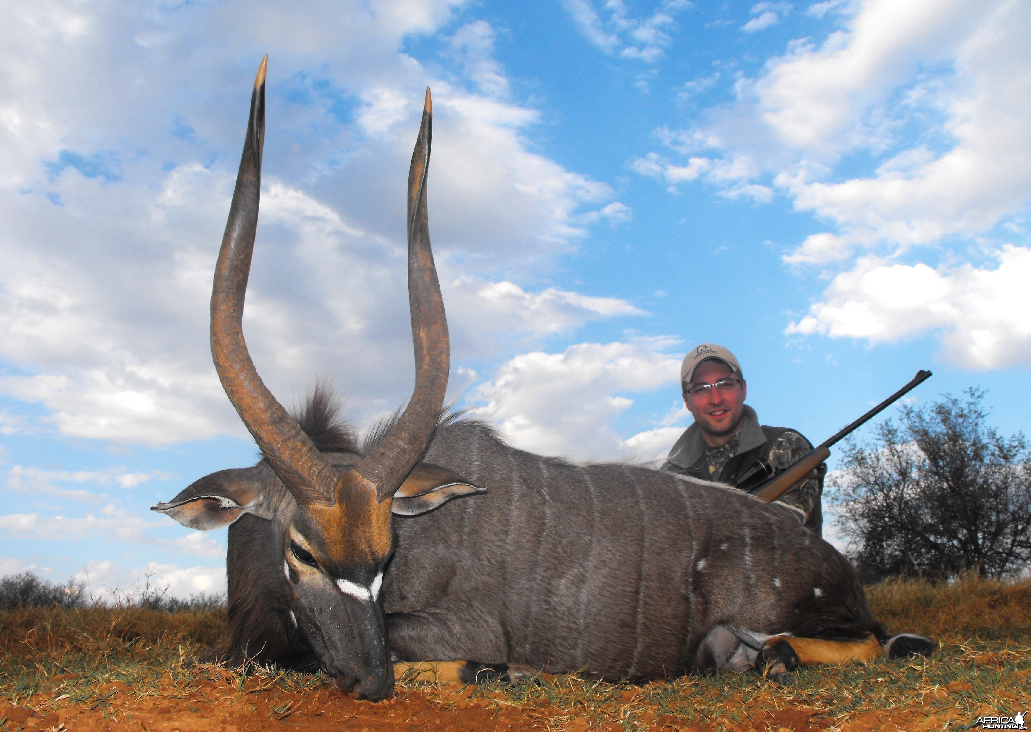 My big beautiful Nyala bull!