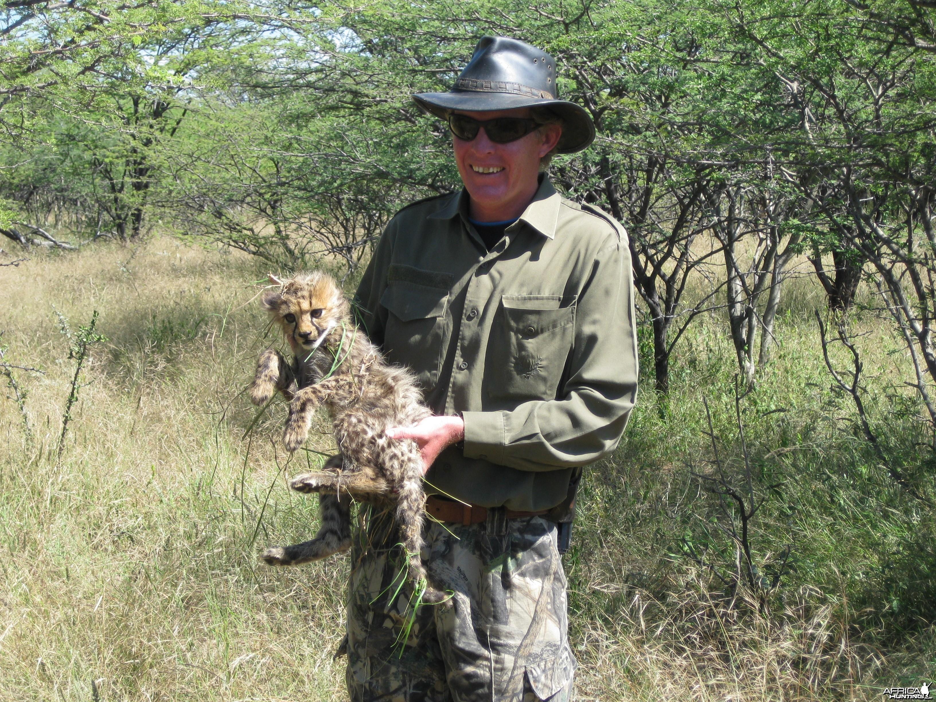 Cheetah Cub Namibia