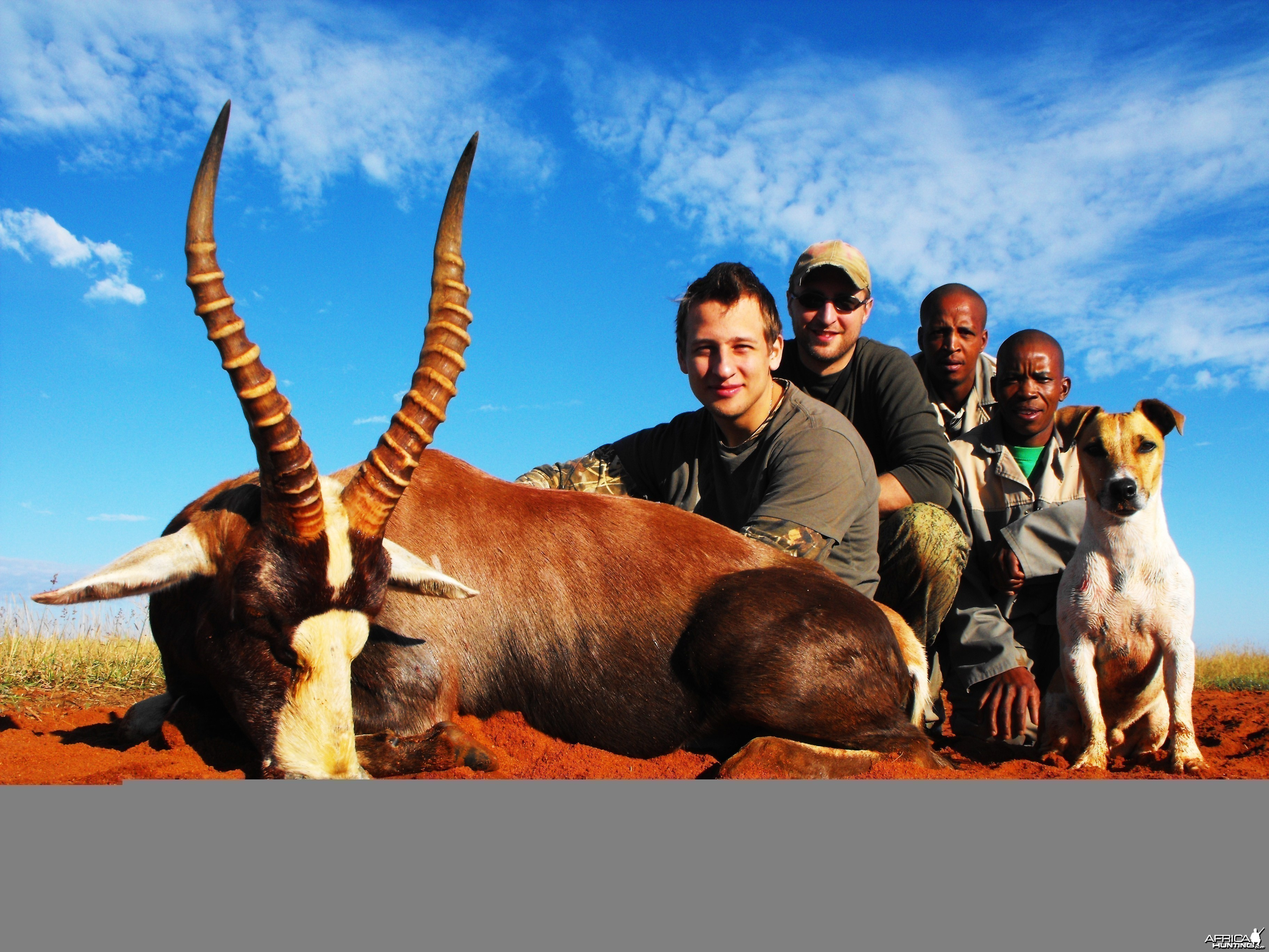 Alexei, his Blesbok and most of the gang.