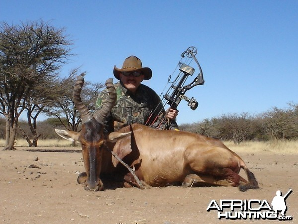 Bow Hunting Red Hartebeest in Namibia