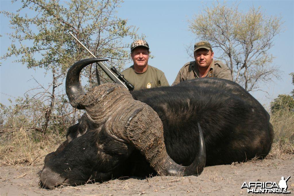 Kwando Buffalo