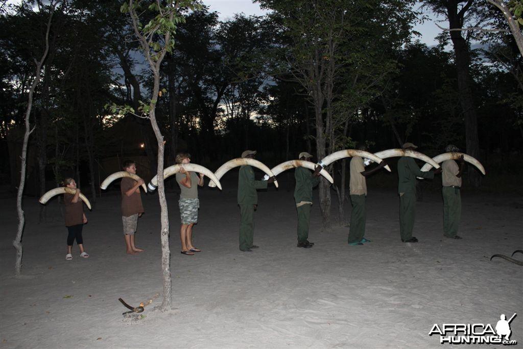 Sobbe Elephant