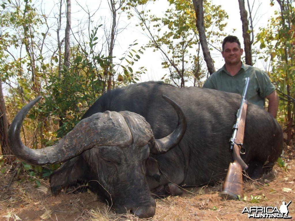 Buffalo Zimbabwe
