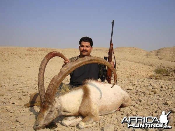 Hunting Sindh Ibex taken in Sindh-Pakistan