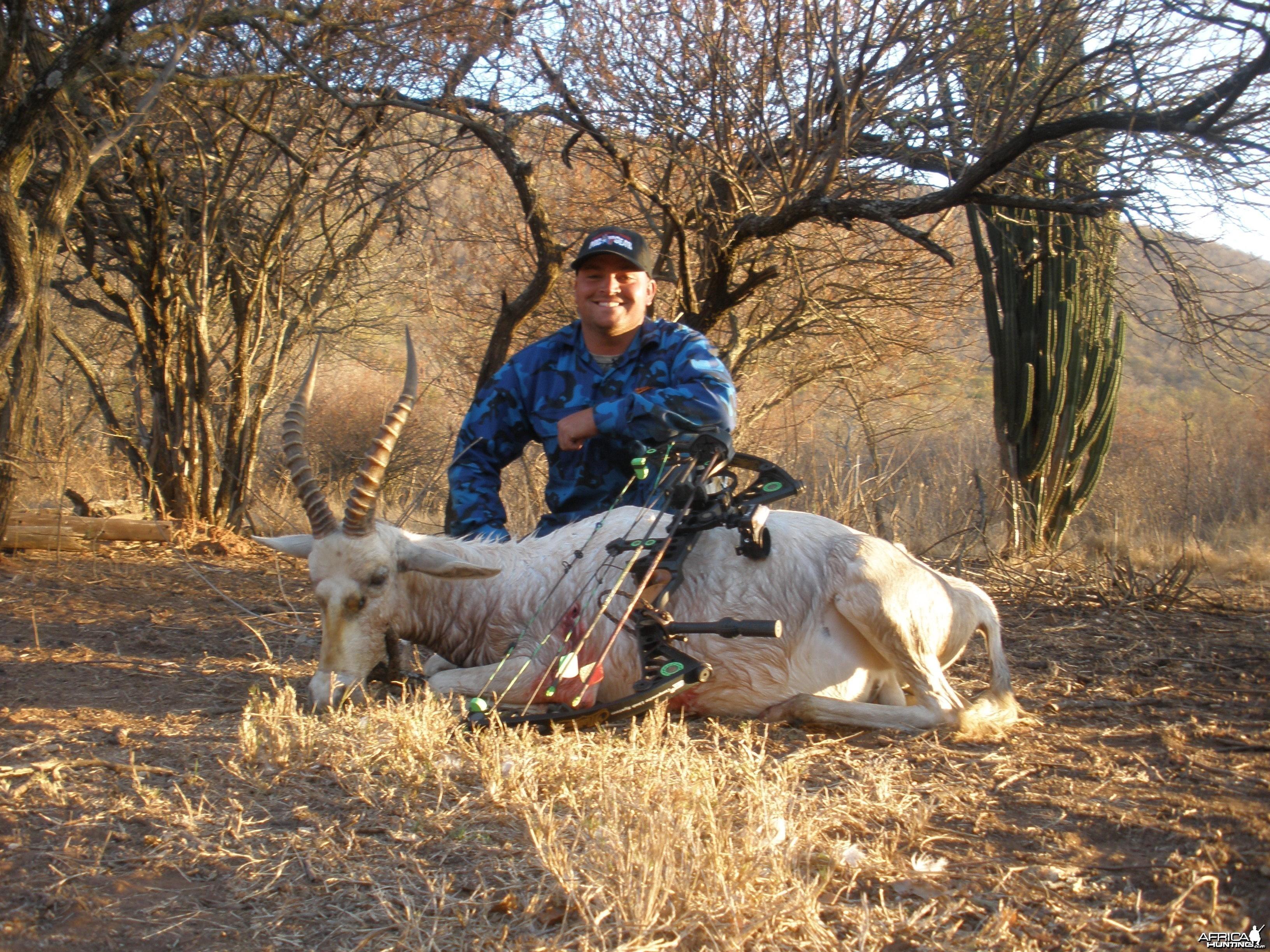 2010 White Blesbuck Mpumalanga Province
