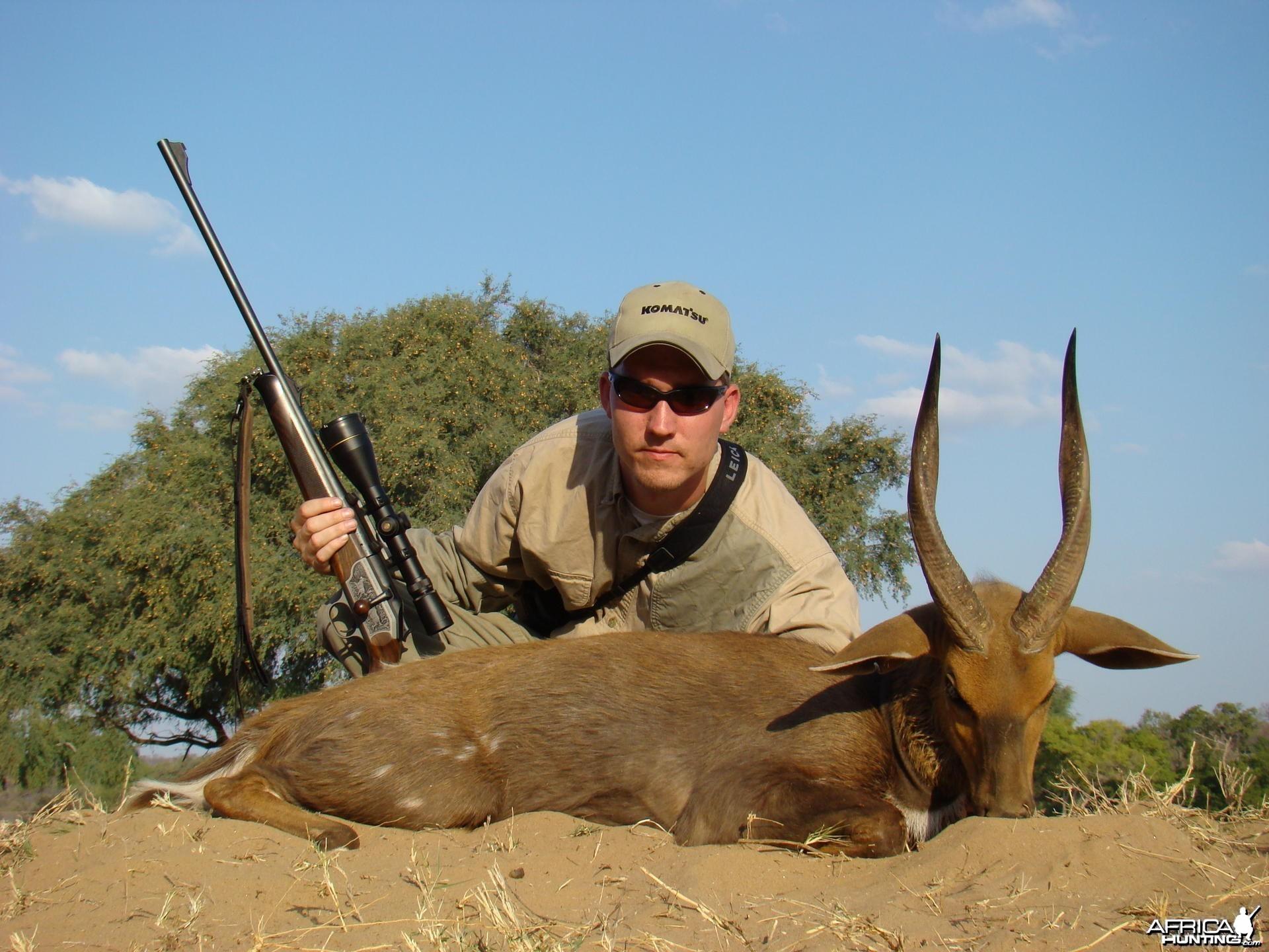 Hunting Bushbuck