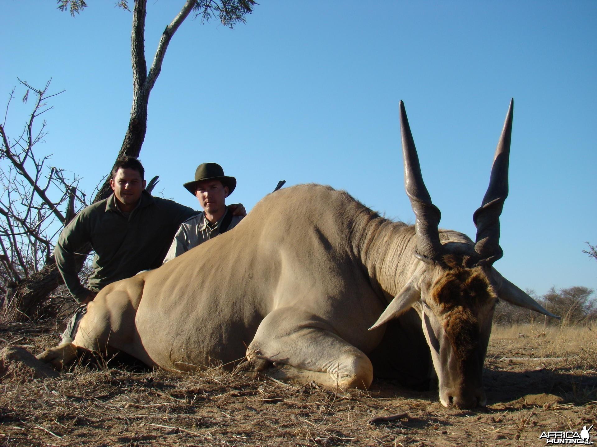 Hunting Eland